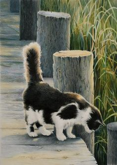 Curiosity by Sherry Egger on ARTwanted