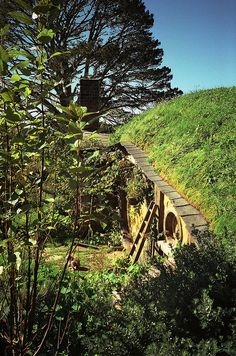 Another from the set of The Hobbit (happy sigh)  Samwise's House by Mischa Pringle, via Flickr