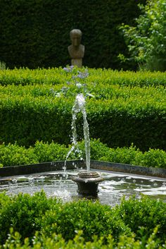 Fountain in the box garden