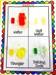 GUMMY BEAR SCIENCE LAB  from TeachersPayTeachers.com You could pay $4 for the 22 page PDF or just figure it out.  You could try different liquids, fewer or more liquids, same colour gummies with different groups.  Lots of possibilities.