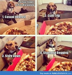 Four stages of pizza bargaining