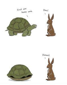 Tortoise and Hare Race, jokideo #Humor #Tortoise_and_Hare