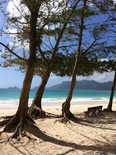 Top Five Family Friendly Beaches of Oahu