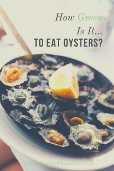 Once suffering from severe over-harvesting, oysters are bouncing back. Besides being tasty, oysters are actually good for you. But what is their impact on the environment? And is there a difference between wild and commercially farmed oysters? Follow the link to find out the truth about oysters! >>>> #oysters #shellfish #sustainablefood #saveouroceans #oceanlife #food #sustainability #healthyeating #partyfood #greenliving Sustainable Food, Sustainable Living, Eating Raw, Healthy Eating, Peanut Butter Jar, Raw Oysters, Save Our Oceans, Green Products, Super Greens