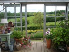 Perch Hill NGS Open Day June - Inside the greenhouse