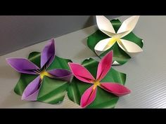 Spring Water Lily Flower - FREE Print at Home - YouTube