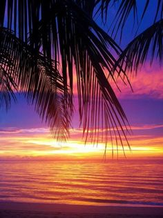 This is an example of a colorful sunrise in September in Ft. Lauderdale!!  What are the colors of autumn??  Show us your boards to win!!