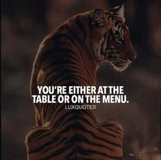 Youre either at the table or on the menu. Animals, Animales, Animaux, Animal, Dieren, Animais
