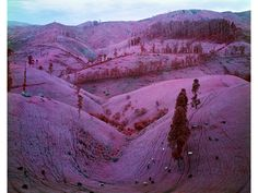 Photos of Eastern Congo by Richard Mosse