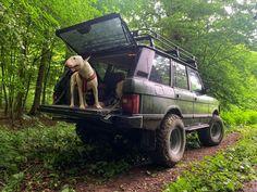 #rangerover #bullterrier #classic #offroad Range Rover Classic, Range Rovers, Bull Terrier, Rigs, Cars And Motorcycles, Offroad, Ranger, Trucks, Vehicles