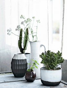 Galleri: Guide: 10 tips til at bo med planter | Femina