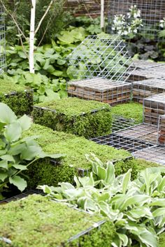Customizable Gabion Garden