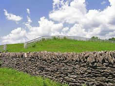 These are stone fences built in the 1700-1800's and similar are across the road from my house...They are all over central Kentucky