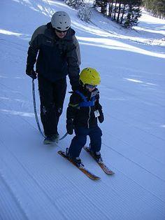 11 Best ski harness images | Skiing, Ski, Snow board
