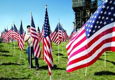 921 American flags fly for fallen US heroes