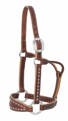 Weaver Leather Average Rock Star Bronc Halter, Sunset Weaver Leather,http://www.amazon.com/dp/B00BV1DQX0/ref=cm_sw_r_pi_dp_MJV0sb08XMDYBYHS absolutely gorgeous !