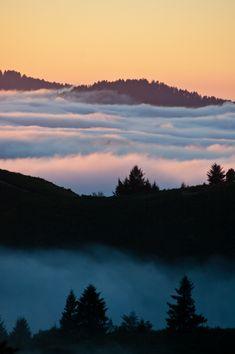 Santa Cruz Mountains, California, USA, (by twoGiraffe)