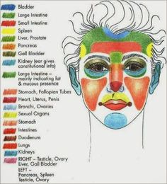An interesting diagram that shows what can cause acne on different areas of the face