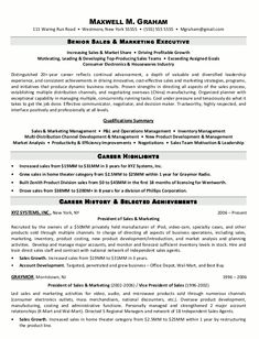 Resume Samples For Sales Executive Resume Example For Job  Httpwww.resumecareerresumeexample .