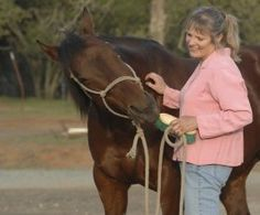 Reward Your Horse the Right Way from Horse | EquiSearch