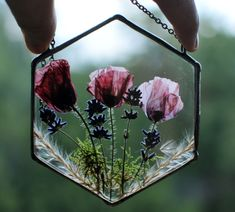 Pressed Flowers Frame, Pressed Flower Art, Flower Frame, Pressed Roses, Stained Glass Frames, Drying Roses, Hanging Terrarium, Fleurs Diy, How To Preserve Flowers
