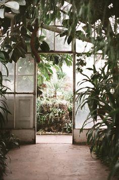 glasshouse greenhouse conservatory sunroom orangerie orangery plants garden atrium #dec