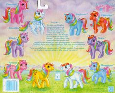 My Little Ponies Rainbow Ponies Year 2 Backcard