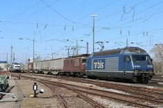 Trains and locomotive database and news portal about modern electric locomotives, made in Europe. Swiss Railways, Electric Locomotive, Europe, Locomotive, Levitate