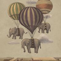 Flight of the elephants by Terry Fan.  whimsical illustrations that sends your imagination spinning!