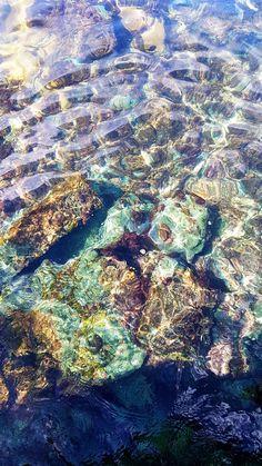 #hingfotografia  Corais Praia do Forno Arraial do Cabo RJ