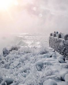 It's So Cold In North America That Niagara Falls Is Frozen, And It Looks Like Something From Narnia Niagara Falls Frozen, Niagara Waterfall, Canada, Fire And Ice, Carpe Diem, Amazing Nature, The Great Outdoors, Winter Wonderland, Amazing Photography