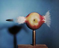 The Reel Foto: Harold Eugene Edgerton: In the Blink of an Eye