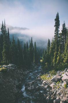 paradise, background, and epic image