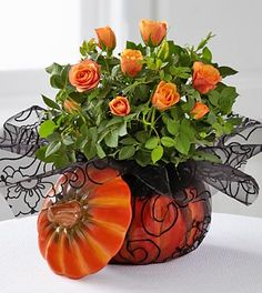 The FTD® Bewitching Beauty Halloween Mini Rose by Better Homes and Gardens® Now what could be better then roses! These are so special and no matter what little witch you send these to, you will be casting a spell on her. Good luck guys!