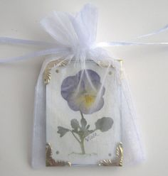 Miniature Pansy Picture Real Pressed by PatsysPressedFlowers Flower Names, Pressed Flower Art, Organza Gift Bags, Picture Sizes, Pansies, Mixed Media, Art Pieces, Miniatures, Victorian