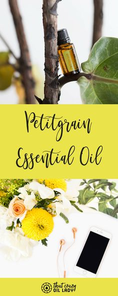 Have you ever heard about Petitgrain?!Petitgrain delivers calming and relaxing benefits to ease feelings of tension and stress.#citrus #essentialoils #essentialoil #stress #petitgrain