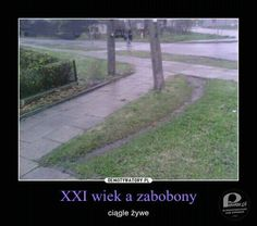 Polish Memes, Polish Language, Text Posts, Hetalia, Country Roads, Smile, Humor, Funny, Poland