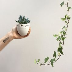 Some might say I'm becoming fern-obsessed....🌿🌿 Beautiful nature-inspired temporary tattoos from the lovely Kira @antlersandhoney #temporaryink