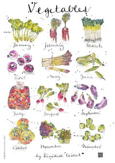 Vegetables in Season Art Print from Original Ink and Watercolour Illustration Dimensions: Dimensions: x Printed on 220 gsm fine art paper Custom orders available, please contact me for prices Looks great in a frame with or without mou. Art And Illustration, Vegetable Illustration, Food Illustrations, Watercolor Illustration, Watercolor Food, Watercolor And Ink, Pinterest Instagram, Poster Art, Food Drawing