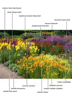 Backyard Garden On A Budget .Backyard Garden On A Budget Outdoor Plants, Outdoor Gardens, Landscape Design, Garden Design, Border Plants, Planting Plan, Garden Borders, Colorful Garden, Shade Garden