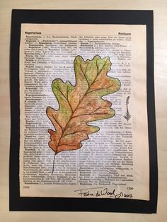 Oak Leave 1