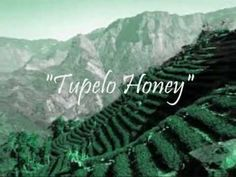 Tupelo Honey ~ Van Morrison  Love this man and his music <3 happy memories with this song.