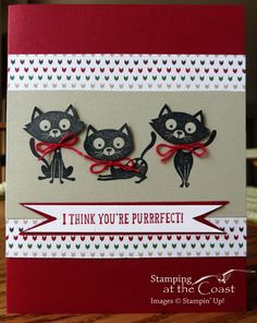 Stampin' Up! You Little Furball