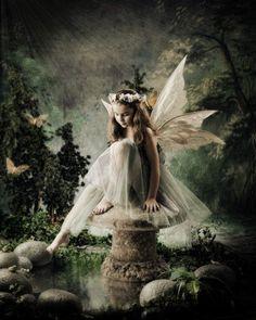 night rain fairy - Hledat Googlem