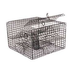 CHESAPEAKE CRABBING SUPPLIES Crab Pots, Vinyl Wire Lobster Trap, Crab And Lobster, Blue Crab Trap, Cast Nets, Accessories Online, Pots, Decorative Boxes, Fishing, Wire