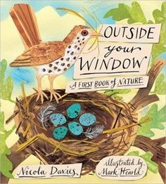 Outside Your Window: A First Book of Nature by Nicola Davies, illustrated by Mark Hearld