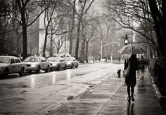 Rain. Washington Square. Greenwich Village, New York City.