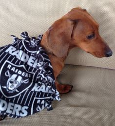 Raiders Doggie Chewing Blankets by MuttMania on Etsy, $10.00