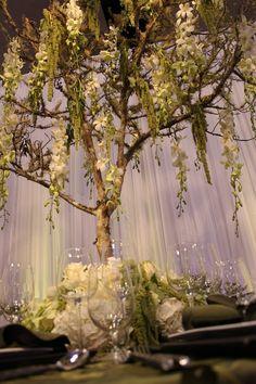 photos of twilight breaking dawn wedding Tree Centerpieces, Wedding Centerpieces, Wedding Table, Our Wedding, Dream Wedding, Tree Themed Wedding, Wedding Reception, Centrepiece Ideas, Wedding Night