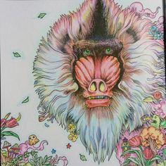 #coloring #coloringbook #colordpencil #animorphia #kerbyrosanes #hamadryas…